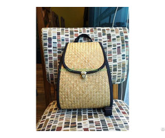 Selling Seagrass Backpack Fashion Bag Vn01b033