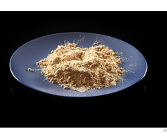 Food Grade Soya Lecithin Powder Supplier