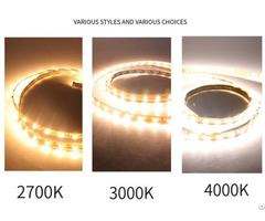 Led High Brightness And 5050 Bare Board Low Voltage Light Strip Wholesale