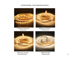 China Living Room Showcase 3528 Bare Board Low Voltage Led Light Strip Wholesale