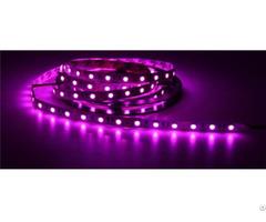 China High Quality Wedding Bar Ktv Decoration 5050led Pink Light Strip Wholesale