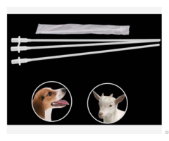 Insemination Catheter For Dog Canine