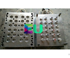 Diameter 38mm Plastic Injection Water Cap Mould