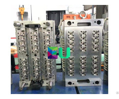 Plastic Injection Small Gate Itself Locking Preform Mould