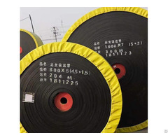 China Nylon Conveyor Belt