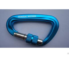 D Shape Carabiner For General Motors