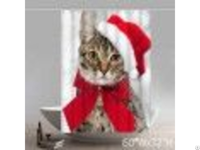 Funny Cat With Santa Hat Kitchen Christmas Shower Curtains