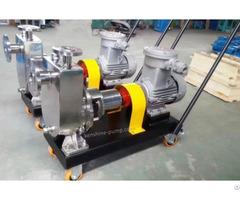 Jzm Fmz Stainless Steel Self Priming Pump