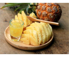 The Fresh Pineapple Wholesale From Vietnam