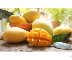 Quality Fresh Natural Fruit Sliced Chunk Pieces Canned Mango In Syrup