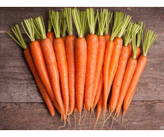 Viet Fresh Carrot