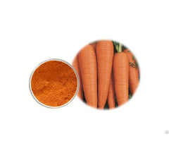 Carrot Flour For Cooking And Cosmetic