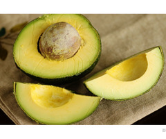 Organic Fresh Avocado Fruit