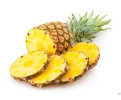 Fresh Pineapple Viet Nam