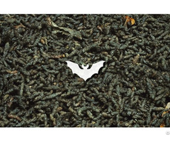 Bat Guano Manure