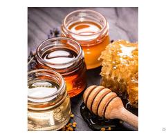Honey Bee From Vietnam