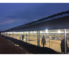 Prefabricated Steel Structure Broiler House For Poultry Shed