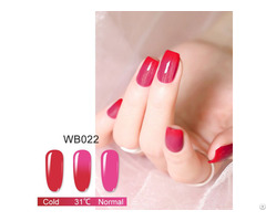 The New Fashion Mood Changing Color Dip Nail