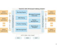 Sms Gateway Software Provider Teleoss
