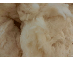 Cotton Waste Comber Noils From Pakistan