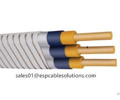 Esp Cable Downhole