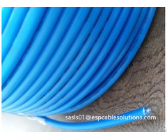 Etfe Cable Downhole Tec