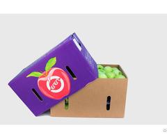 Fresh Apples Fruits