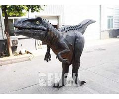 Dinosaur Costume Adult