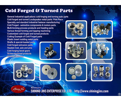 Fasteners Cold Forged Precision Metal Parts