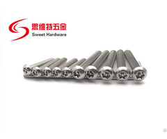 Stainless Steel 304 Security Anti Theft Torx Button Head Machine Screw T8t10