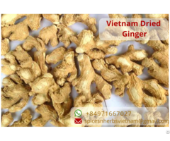 Dehydrated Dried Ginger
