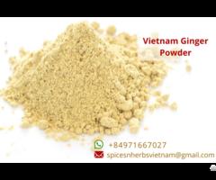 Ginger Powder Vietnam