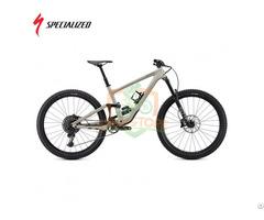 Specialized Enduro Elite Mountain Bike