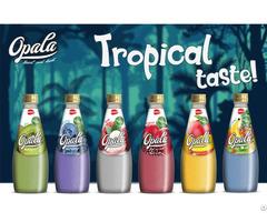 Opala Basil Seed Drinks