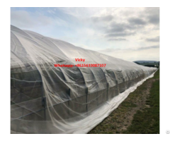 Greenhouse Insect Net 50 Mesh