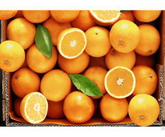 Orange For Sale