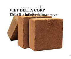 Cocopeat For Plant
