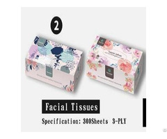 Free Samples Oem Factory Customized Wood Plup 2ply Box Facial Tissue Napkins