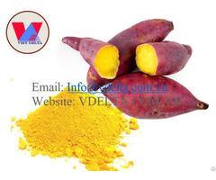 Sweet Potato Powder High Quality