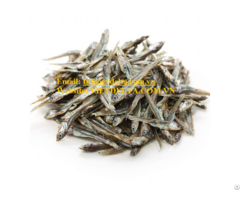 Dried Anchovy From Vietnam