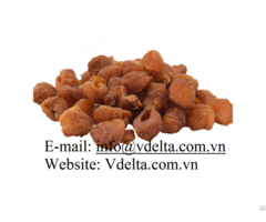 Vietnam Tropical Fruits Air Dried Longan High Quality