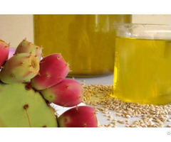 The Prickly Pear Seed Oil Wholesale