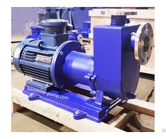 Stainless Steel Self Priming Magnetic Pump