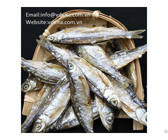 High Quality Packedherring Dried Fishes Vdelta