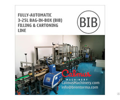 Fully Automatic Bag In Box Syrup Filling Machine And Cartoning Line