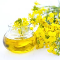 Rapeseeds Oil For Export