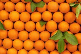 Need Orange We Import Oranges On Seasonal Basis