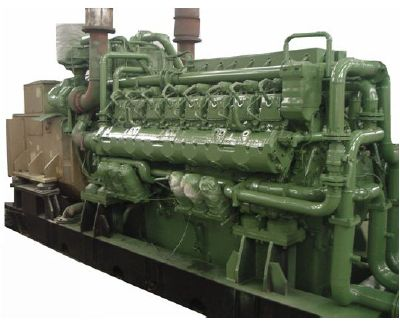 1 Natural Gas Genset 2 Biogas 3 Syngas