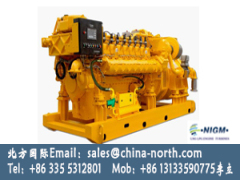 1000kw 3000kw Large Power Natural Gas Generator