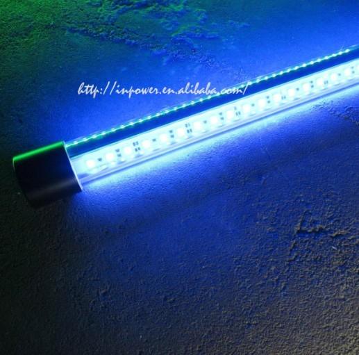 12v Popular In America Underwater Fishing Light